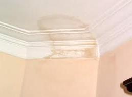 ¿Puedo arreglar manchas de humedad?